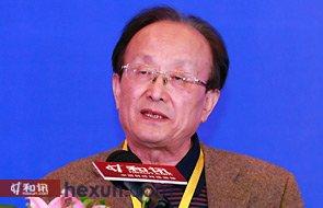 原全国人大财经委办公室副主任、基金法起草工作组组长 王连洲