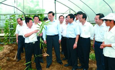 江来到荣昌县盘龙镇高效农业园调研,了解特色农业产业化发展情况