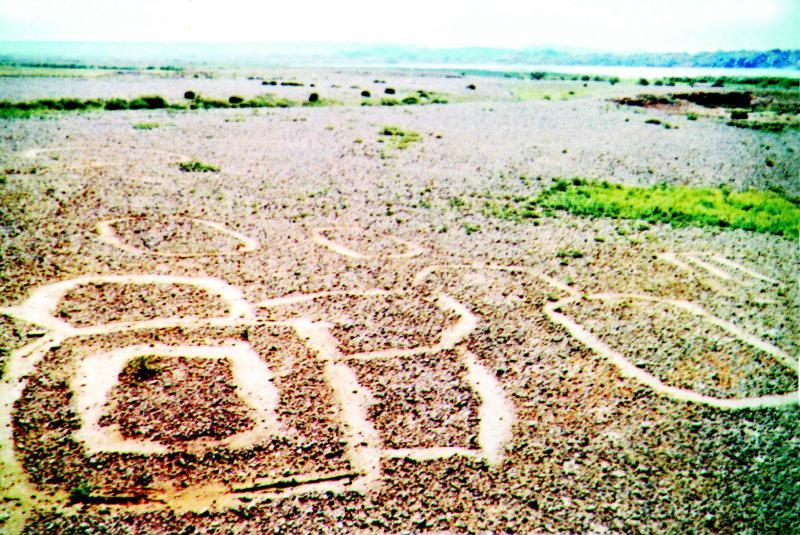 贝壳和海螺?在这个荒山之上?图片