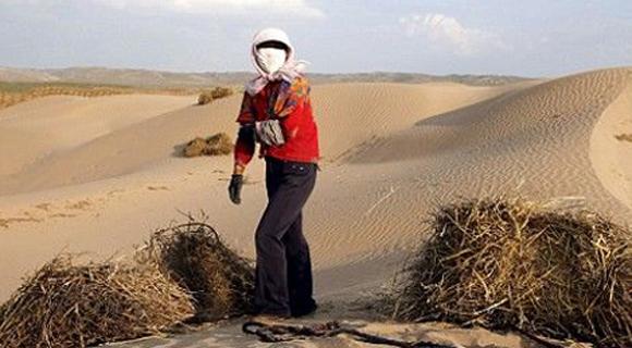 沙化土地占中国国土面积近两成