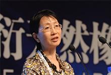 中国橡胶工业协会会长 邓雅俐
