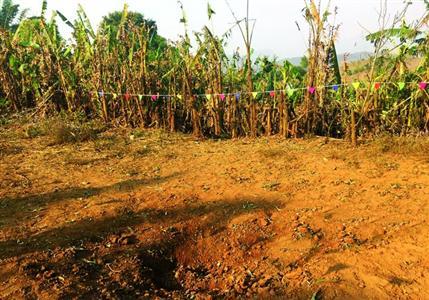 缅甸总统办公室称投弹并非缅军方所为,暗指果敢同盟军