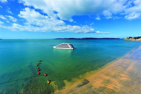 新西兰,美丽的风景在路上