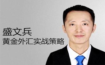 盛文兵:中国式外汇黄金原油实战培训
