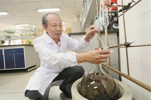 楚天都市报讯 图为:湖北中医药大学教授卢金清在研究草药